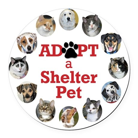 Adopt a Shelter Pet Round Car Magnet