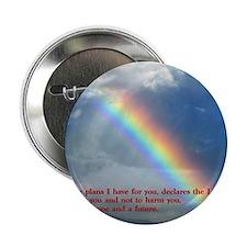 """Jeremiah 29-11 Rainbow 2.25"""" Button"""