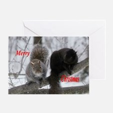Black and Gray Squirrel Greeting Cards