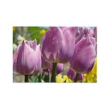 Tulip Garden 83M purple lavender  Rectangle Magnet