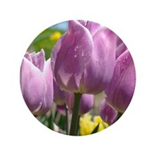 "Tulip Garden 83M purple lavender Tulip 3.5"" Button"