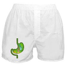 DH_PB_STOMACH_8x10_apparel Boxer Shorts