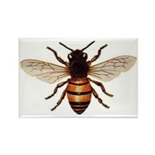 Honey%20bee Rectangle Magnet