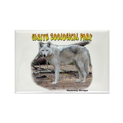 Gray Wolf Rectangle Magnet (100 pack)