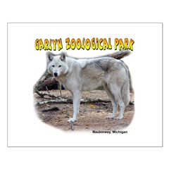 Gray Wolf Posters