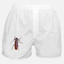 Dont Bug Me Funny Itouch2, Itouch4 Ip Boxer Shorts