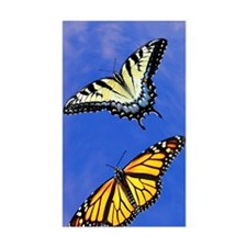 Butterfly Itouch2 Itouch4 Ipod Decal