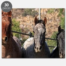 Trio of Horses Puzzle