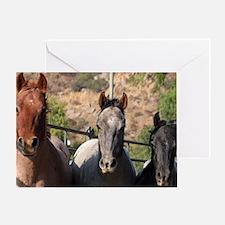 Trio of Horses Greeting Card