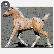 Palomino Colt Puzzle