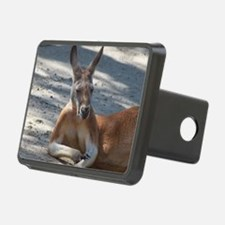 IMG_0626 - tile Rectangular Hitch Cover