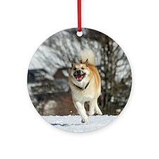 IcelandicSheepdog016 Round Ornament