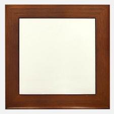 Santa Rosita white Framed Tile