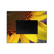 Ladybug on Sunflower1 Picture Frame