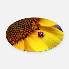 Ladybug on Sunflower1 Oval Car Magnet