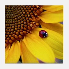 Ladybug on Sunflower1 Tile Coaster