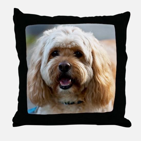 DeeJay lt Squ Throw Pillow