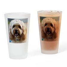 DeeJay lt Squ Drinking Glass