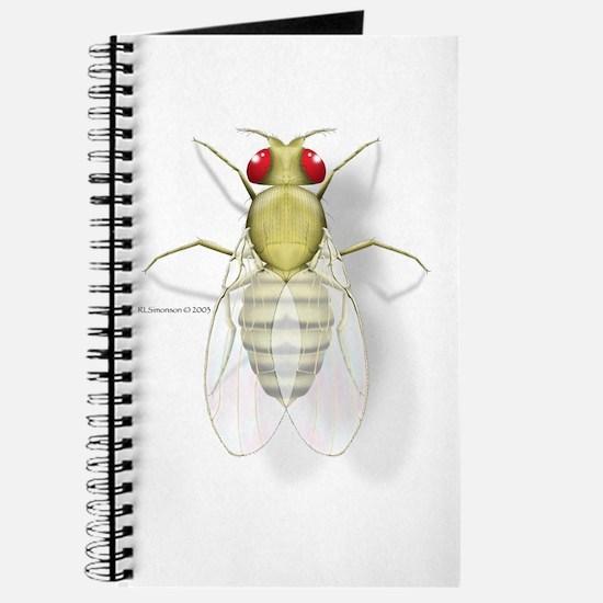 Drosophila Journal