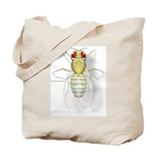 Drosophila Tote Bag