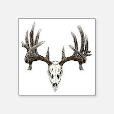 """whitetail deer skull Square Sticker 3"""" x 3"""""""
