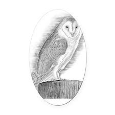 Copy of Barn Owl Oval Car Magnet