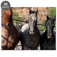 3 Roan Horses Puzzle