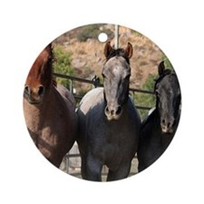 3 Roan Horses Round Ornament