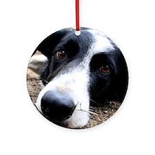 Sad Dog Eyes Round Ornament