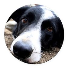 Sad Dog Eyes Round Car Magnet