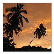 "Palm Trees at Sunset Square Car Magnet 3"" x 3"""