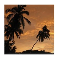 Palm Trees at Sunset Tile Coaster