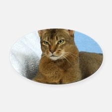 Abyssinian Cat 9Y009D-020 Oval Car Magnet