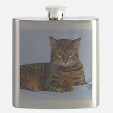 Bengal Cat 9W052D-023 Flask