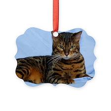 Bengal Cat 9W052D-023 Ornament