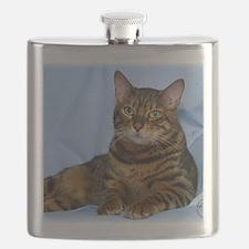 Bengal Cat 9W052D-018 Flask