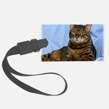 Bengal Cat 9W052D-018 Luggage Tag