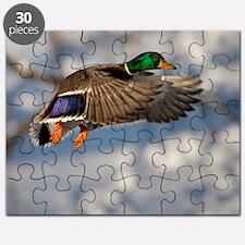 D1271-005cal Puzzle