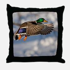D1271-005cal Throw Pillow