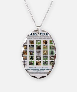 FindthePitBull16x20 Necklace