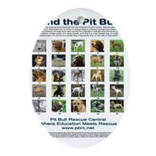 FindthePitBull16x20 Oval Ornament