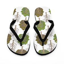 ArgyleTrees01 Flip Flops