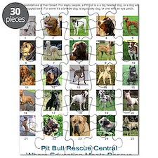 FindthePitBull copy Puzzle