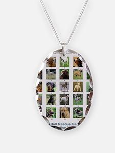 FindthePitBull copy Necklace Oval Charm