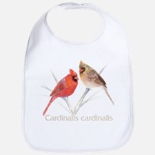 Cardinal pair Bib