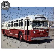 Regina200b Puzzle