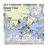 Martha\'s vineyard Drink Coasters