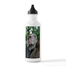 MonekyForrestiPhone Water Bottle