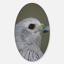 EagleiPhone Sticker (Oval)