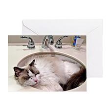 Bentley in sink3 Greeting Card